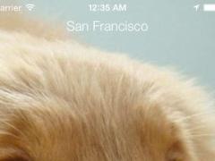 Weather to Walk Your Dog 1.0.1 Screenshot