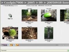Web File Viewer 1.3 Screenshot
