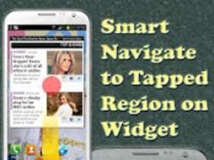 WebSnap Donation 1.0 Screenshot