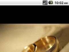 Wedding Ring Photography 2013.1 Screenshot