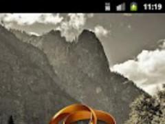 Wedding rings Widget 1.0 Screenshot