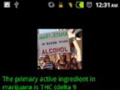 Weed Facts 1.1 Screenshot