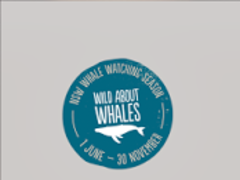 Wild About Whales 2.0.4 Screenshot
