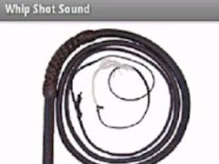 Whip Shot Sound 1.1 Screenshot