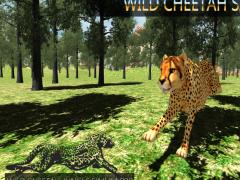 Wild Cheetah Jungle Simulator 1.5 Screenshot