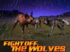 Wild Dog Simulator 3D 1.2 Screenshot