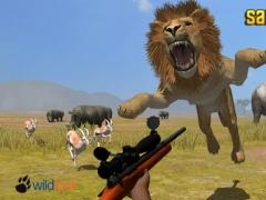 Wild Safari Hunt 1.0 Screenshot