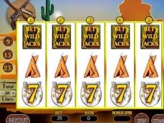 Wild West Slots 1.0 Screenshot