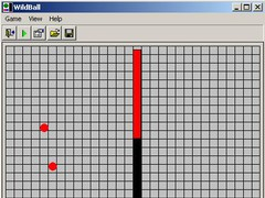 Wildball for Windows 21 Screenshot
