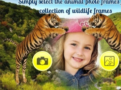 Wildlife Photo Frame 1.1 Screenshot