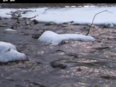 Winter Creek Live Wallpaper 0110 Screenshot