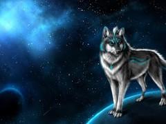 wolf wallpaper hd - magic pro 1.0 Screenshot