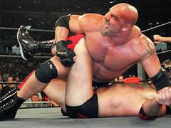 Wrestling Tournament 1.0 Screenshot