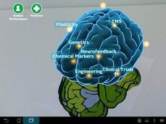 Wright State Brain Scan 1.1 Screenshot