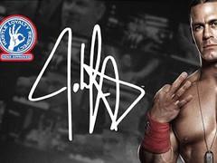 WWE Superstar Gallery HD 1.0 Screenshot