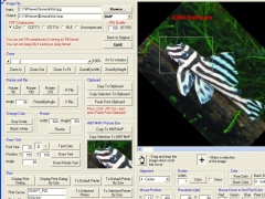X360 Image Viewer ActiveX OCX (Twice Developer) 5.10 Screenshot