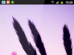 Xperia Z Nature Wallpaper 1.0 Screenshot