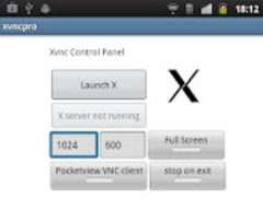xvncpro: XFree86 X/X11 server 4.1.3 Screenshot