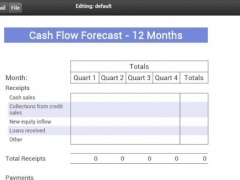 Yearly Cash Flow Forecast 0.0.4 Screenshot