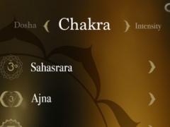 Yoga from the heart 1.3 Screenshot