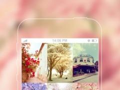 Zebra Wallpapers - Not just pictures 3.0 Screenshot