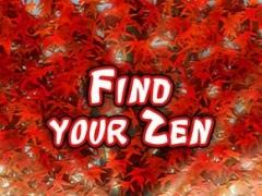 Zen Training 1.11 Screenshot