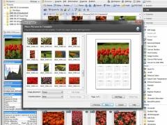 Zoner Photo Studio Home 11 Screenshot