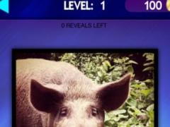 Zoo and Pet Animals Mania Pro - Kids Game - Safe App - No Adverts 2.1.2 Screenshot