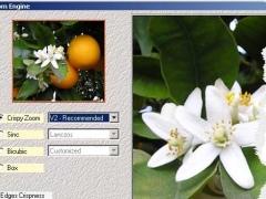 Zoom Engine 1.0 Screenshot